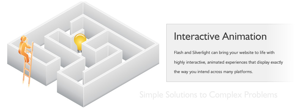 Flash and Silverlight can bring your website to life with highly interactive, animated experiences that display exactly the way you intend across many platforms.