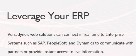 Leverage Your ERP